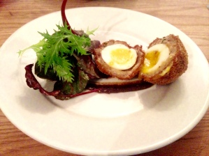 Warm and golden scotch egg with chef's brown sauce